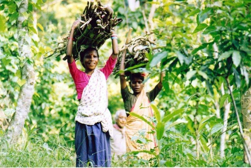 Women carrying wood in Srimangal, Bangladesh, 1997