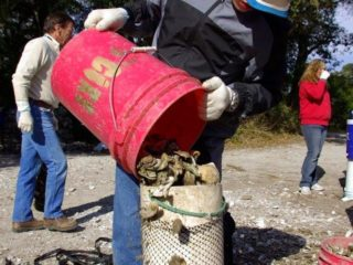 Kate's son volunteer bagging oysters in Charlestown, SC!