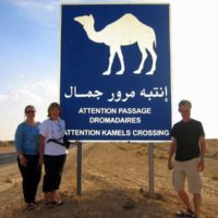Traveling U.S. Teachers, and a camel crossing in Tunisia!