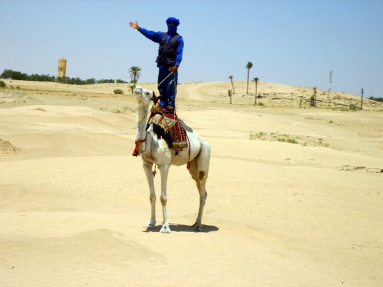 Camel acrobatics on the GEEO teacher travel trip to Tunisia.