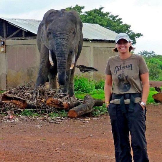 Kim and an elephant at Mole National Park!