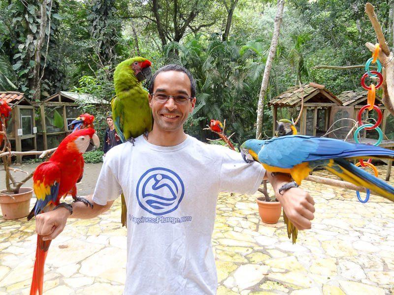 Macaw Mountain Bird Park in Honduras.