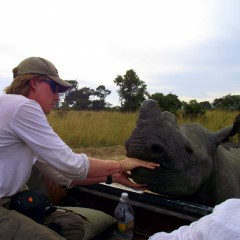 James: Rhinos and Teaching in Zimbabwe, then RTW Travel!