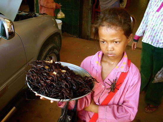 Girl selling tarantulas in Cambodia. Oh my!