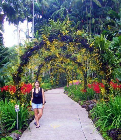 With the beautiful flowers of Singapore's Botanical Garden.