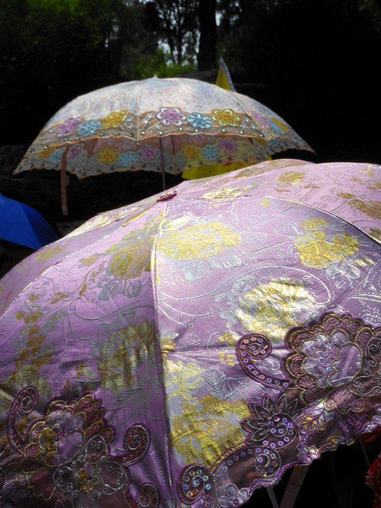Pretty parasols spotted during travel.