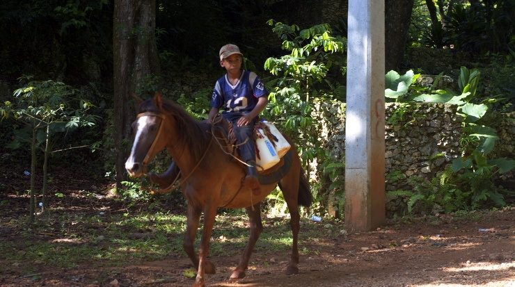 Boy out for a ride in the countryside, Dominican Republic.