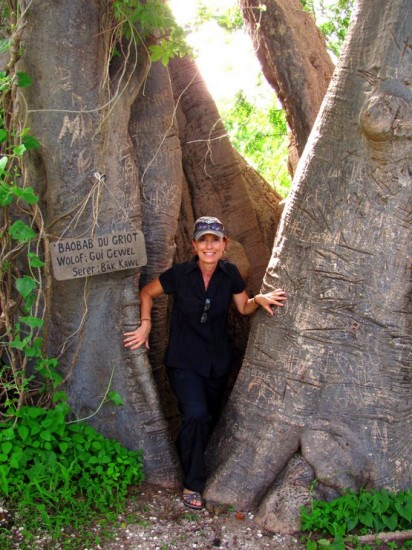 "On a hike on what our host called ""Shell Island"" in Senegal, the famous baobab tree, with its hollow center provided a photo op."