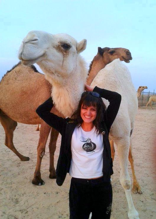Weekends enjoying the desert and its camels in Kuwait.