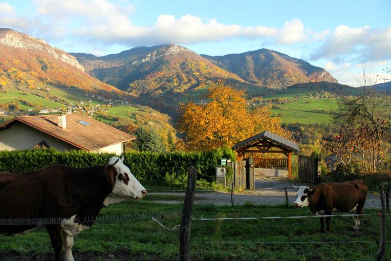 The countryside in Chambery, France, where Laura lived.