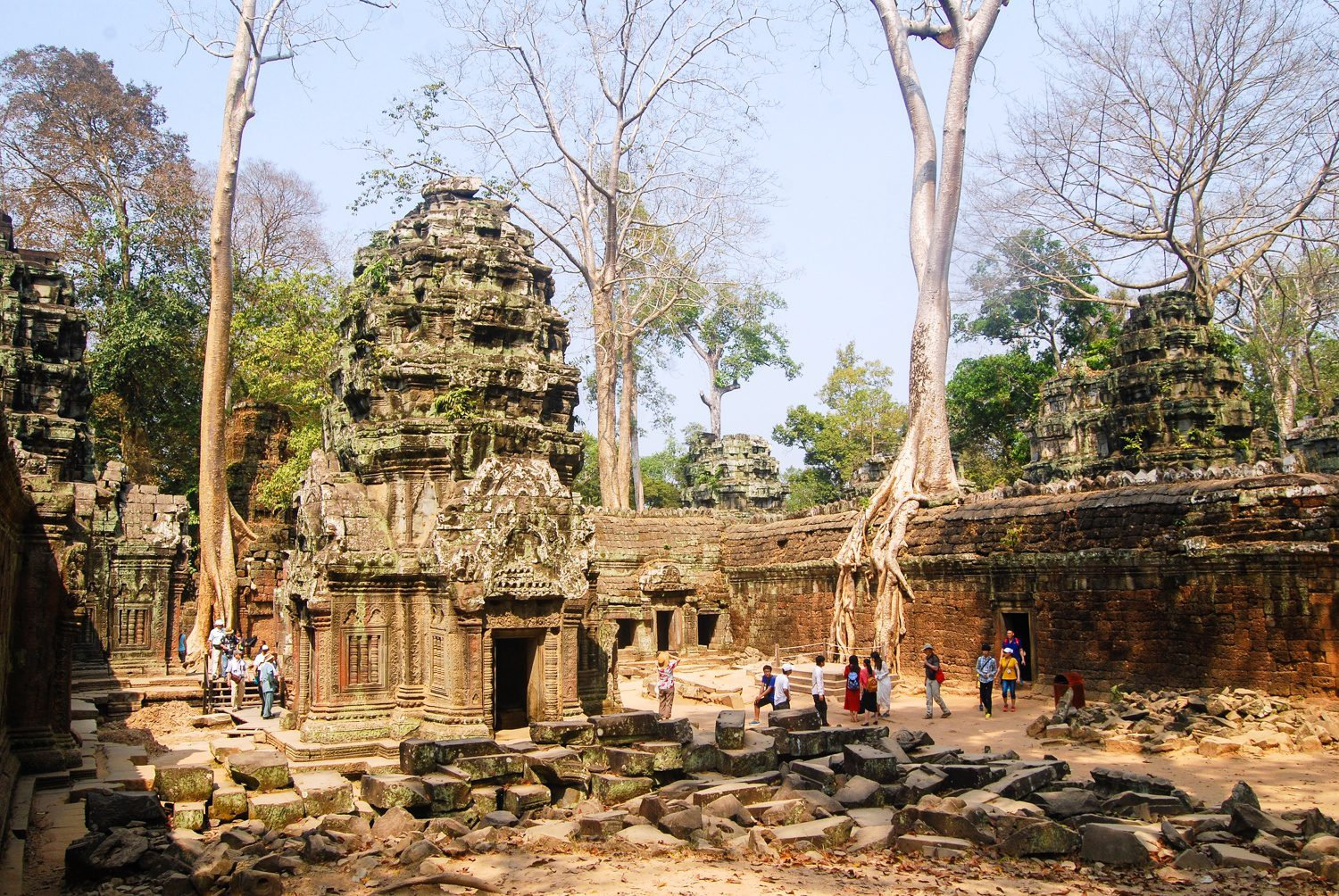 Ta Prohm, Cambodia: one of the many places Beth has toured.