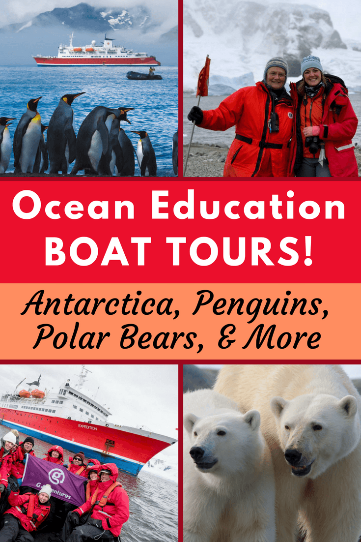 Curious about educational travel opportunities to learn about ocean conservation, including boat cruise expeditions through polar regions? Learn from this interview with Antarctica expert, Susan Adie... and see great polar bear, penguin, and iceberg photos, too! #Boat #Travel #Cruise #Cruising #TravelIdeas #Antarctica #Penguins #PolarBears #BoatTravel