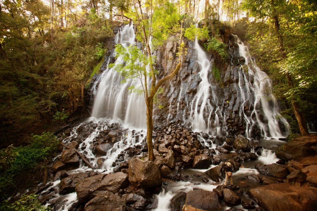Mexico has beauty beyond the butterflies, like this waterfall.