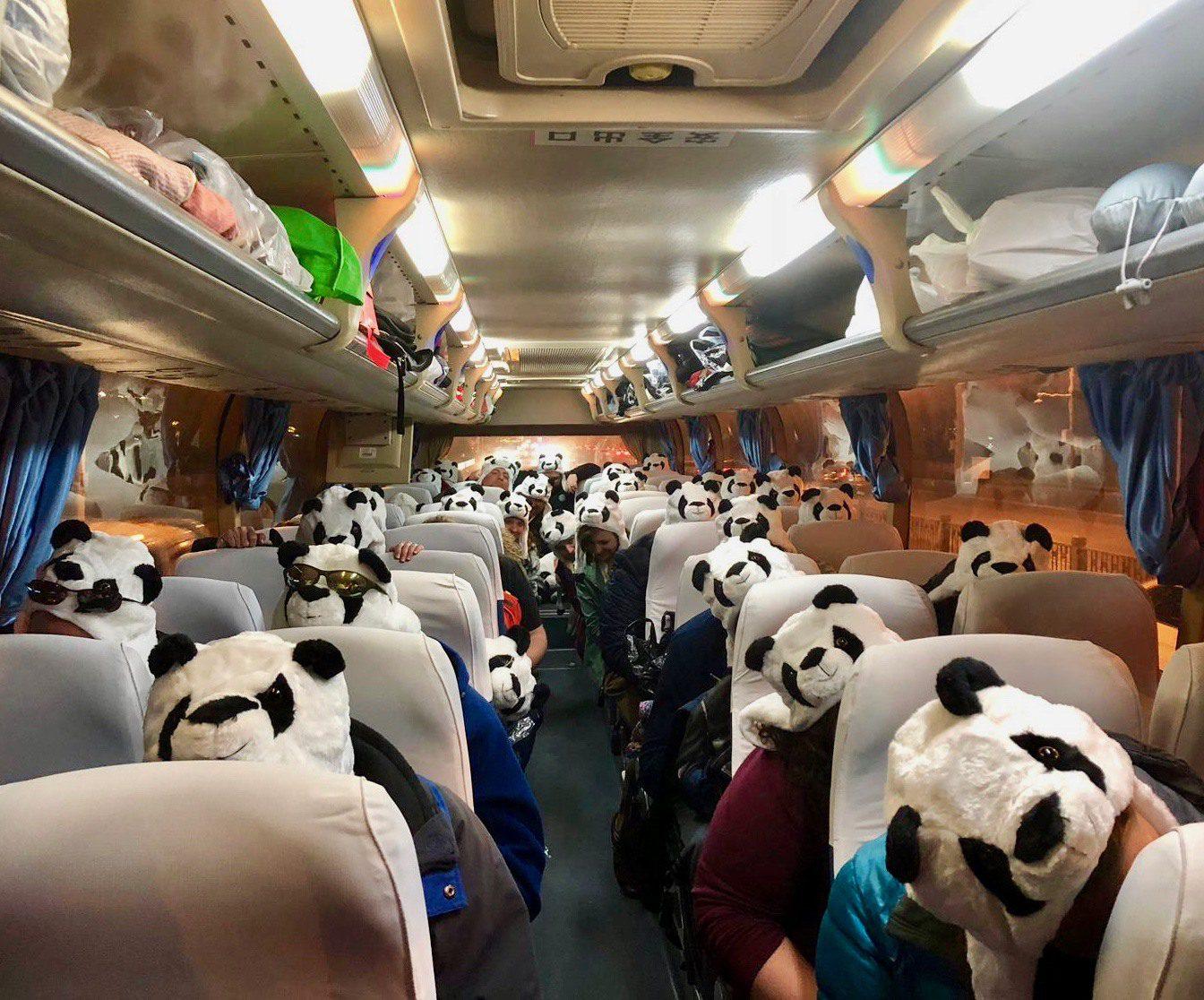 Dressed like pandas on the bus in Beijing, warming up for karaoke.