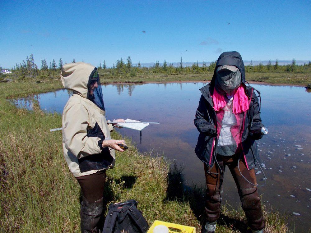 Doing water research on a teacher fellowship.