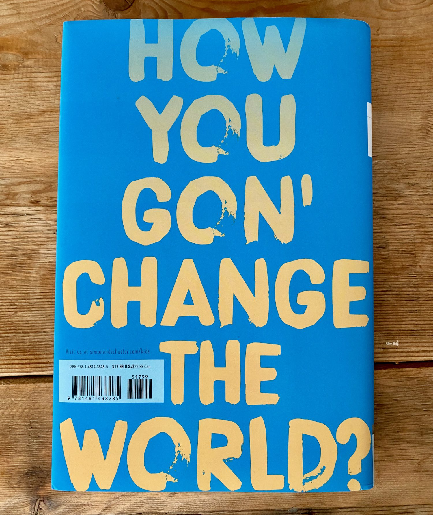 "The back cover of Look Both Ways: ""How you gon' change the world?"""